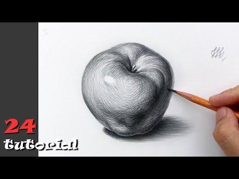 Как нарисовать яблоко поэтапно для начинающих