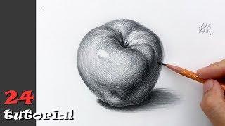 как нарисовать яблоко карандашом  Уроки для начинающих