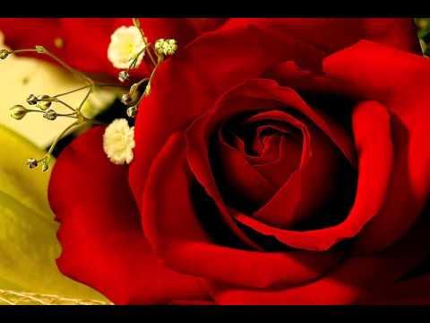First Love by Emilia Pardo Bazán | Love Story, Romance |  Full AudioBook