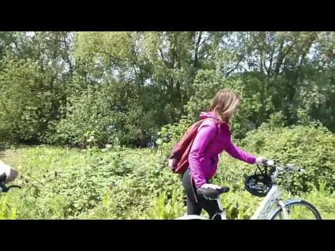 Bicycle ride  from Darwin College to St Ives