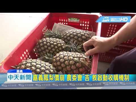 20190318中天新聞 嘉義鳳梨價崩下品1斤剩1元 農委會啟動收購