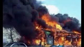 "Breaking ""Italy School Bus Ablaze 51 Students"""