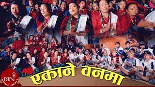 New Nepali Salaijo Song || Ekane Banma - Chhitij Gurung & Sharmila Gurung | Ambika Music
