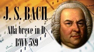 🎼 Johann Sebastian Bach Alla breve in D, BWV 589 | Organ Baroque Music for Relaxation and Studying