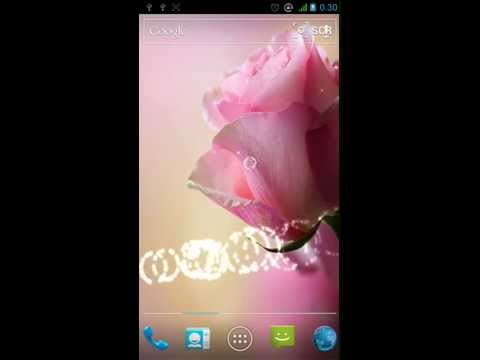 Android Live Wallpaper - Love Rose