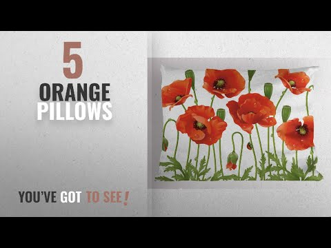 Top 10 Orange Pillows [2018]: Flower Pillow Sham by Ambesonne, Spring Wild Flower Poppy Ladybug Leaf