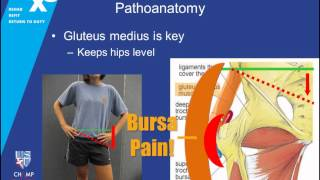 RX3 ECHO Lecture: Hip Pain