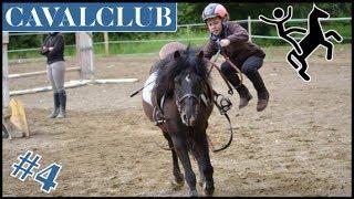 Zap cheval #4