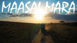 Maasai Mara Safari | Kenya