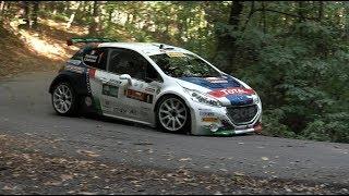 Rally Due valli 2017 - Peugeot 208 T16 e Andreucci- Tappa 1