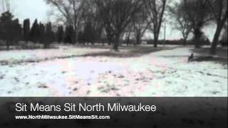 Send Away Commands With Sit Means Sit Dog Training - North Milwaukee