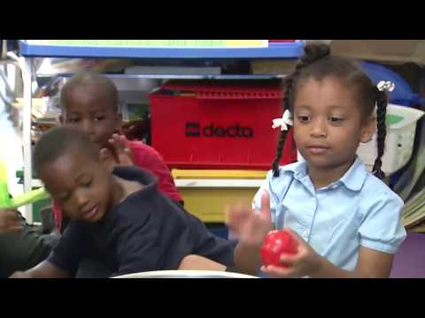 Dr. Martin Luther King, Jr. Montessori Academy - Broward Schools