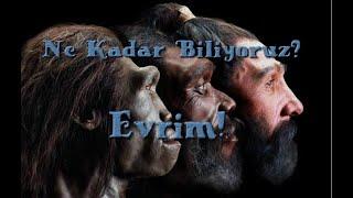 Evrim Hakkında Bilmeniz Gerekenler...