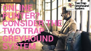 Online Punter? Consider the Two Trap Greyhound System