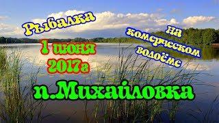 Рыбалка на коммерческом водоёме  п.Михайловка 1 июня 2017 г.