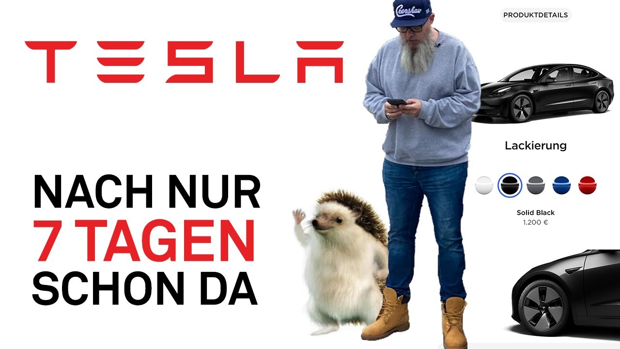 Download Tesla Model 3 bestellt und schon nach 7 Tagen da