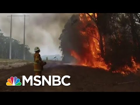 Expert Says Australia Fires Direct 'Impact Of Human Caused Climate Change' | The Last Word | MSNBC