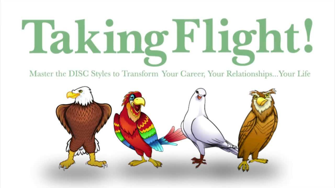 taking flight with disc pdf