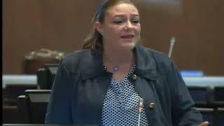 Lourdes Cuesta - Sesión 497 - #LeySeguridadSocial - Punto de información