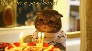 С Днем рождения, Валера!!!
