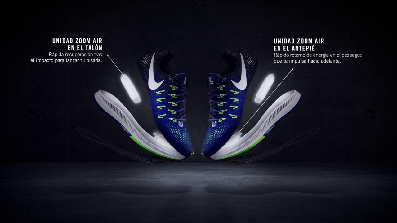 Nike Pegassus 33