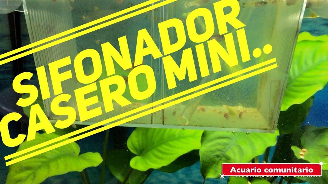 Sifonador casero mini youtube for Acuario comunitario