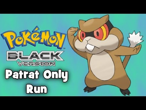 Pokemon Black - Patrat Only Run