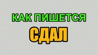 Видео: Как правильно пишется слово СДАЛ по-русски