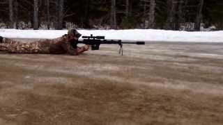 Bushmaster BA-50 50 bmg 1st shot