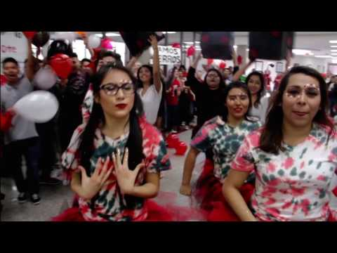Springdale High School Class of 2016 Lip Dub