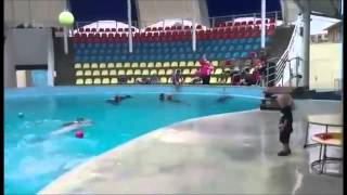 funny dolphin plays ball with kids