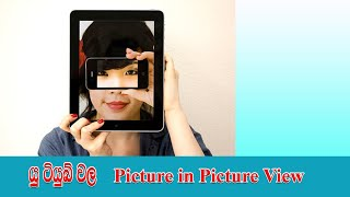 Picture in picture view in youtube