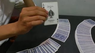 패트릭 묻 x noctis card magic