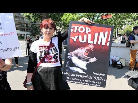 Stop au festival de Yulin (Paris-01 juin 2017)