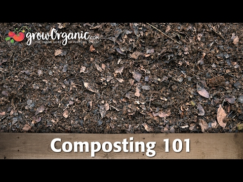 Composting 101 — Making Compost in Composting Bins and Compost Piles