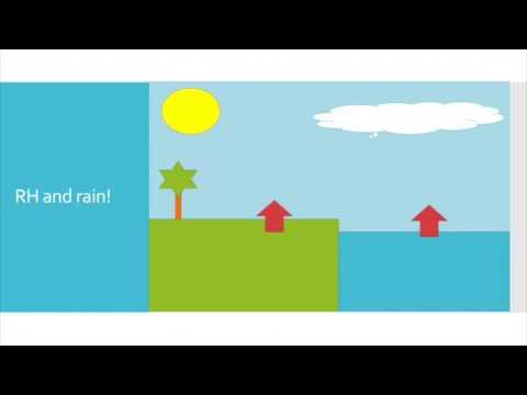 Relative Humidity - Understanding the Concept