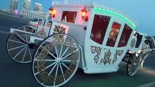 Аренда прокат кареты по городу Астана. Карета в Астане. Свадебная карета.