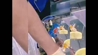 Оформление рыбных блюд от шеф-повара Хачатурова Семёна