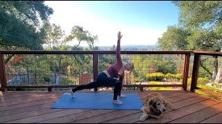 Twist and Flow Vinyasa - 35 min