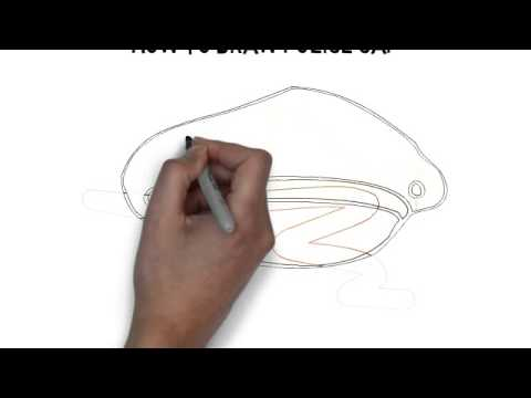 How To Draw Police Cap
