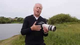cameras and lenses for bird photography comparisons