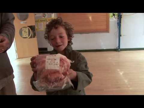 Stroudco - Local Food Distribution