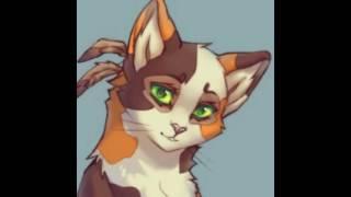 Коты Воители, Пестролистая... Ее смерть при нападении..