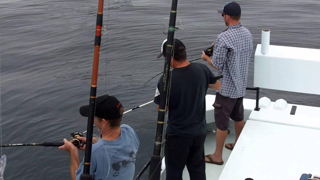Catching rockfish on a santa barbara sportfishing charter for Santa barbara fishing report