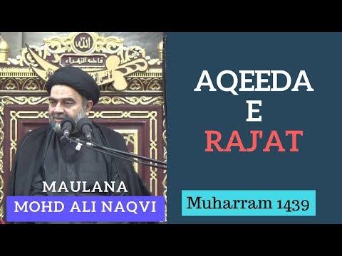 19th Muharram 1439 - Majlis by Maulana Syed Muhammad Ali Naqvi
