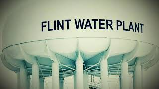 The NETFLIX ORIGINAL SERIES: FLINT TOWN