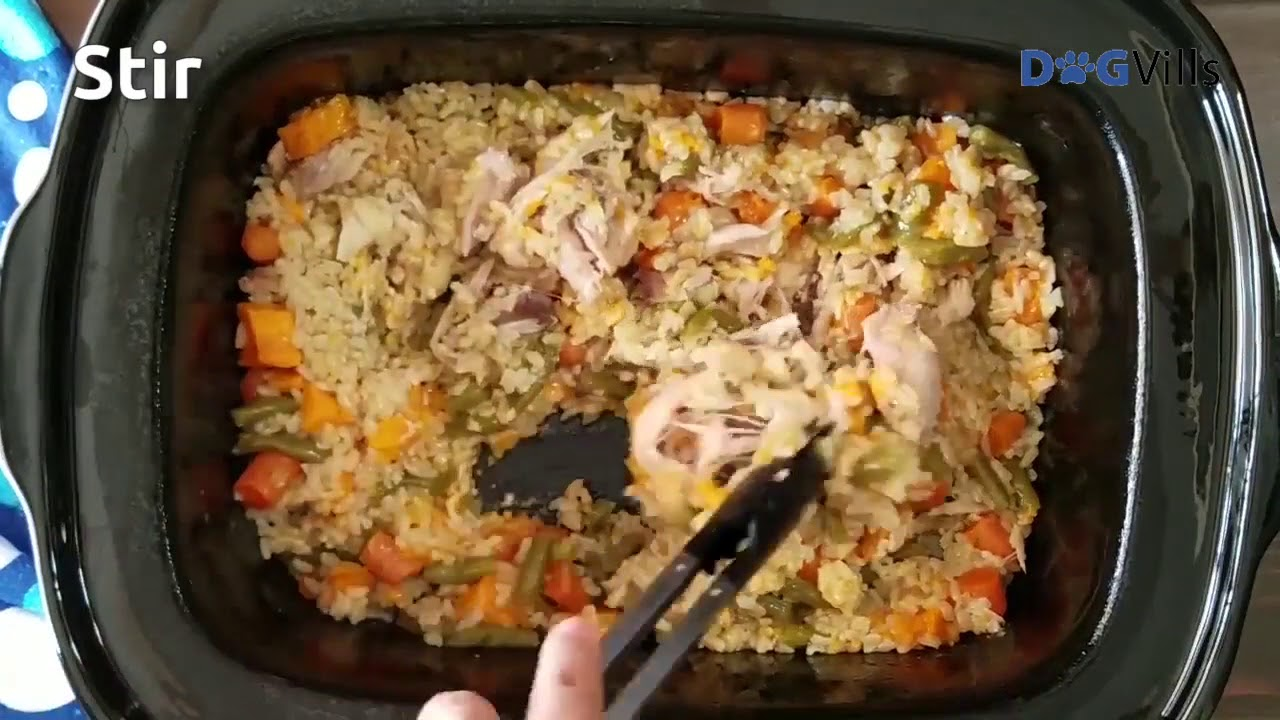 Crockpot chicken homemade dog food recipe youtube crockpot chicken homemade dog food recipe forumfinder Image collections
