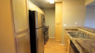 2938 N 61st Pl Scottsdale Arizona Real Estate Investment Property Foreclosure