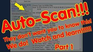 VCDS AutoScan, part 1 of 2