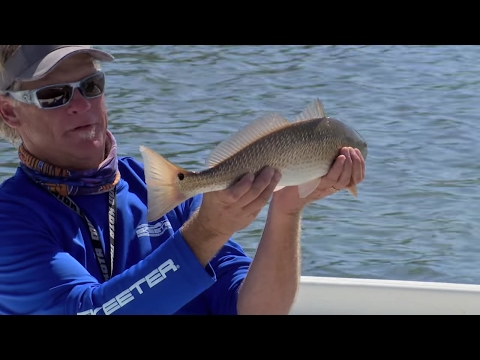 Choctawhatchee Bay Fishing For Redfish And Trout Destin Florida